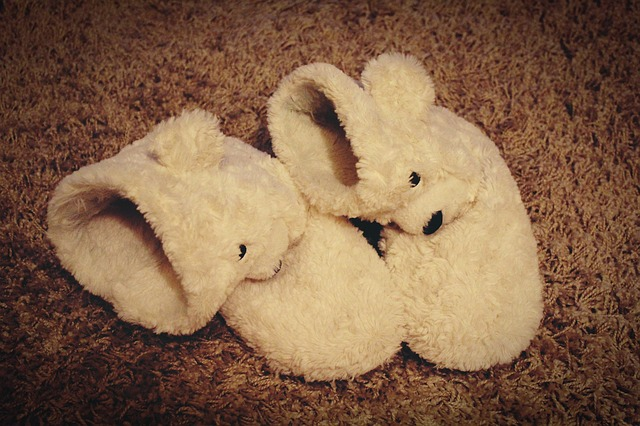 slippers-1173898_640