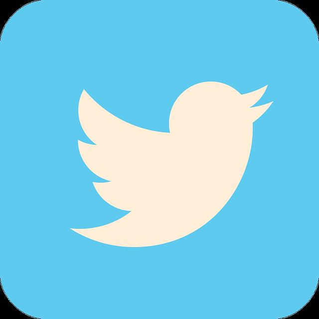 #Blogtober17 Day 28- Twitter
