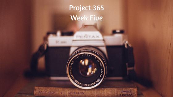 Project 365 Week 5
