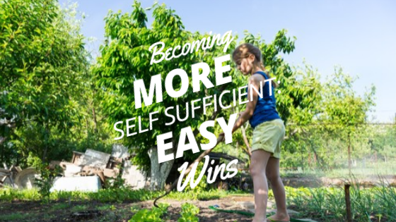 Becoming More Self-Sufficient: Easy Wins