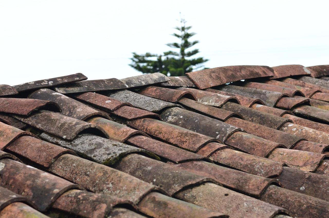 roof tiles of your home